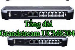 Tong Dai Grandstream Ucm6204