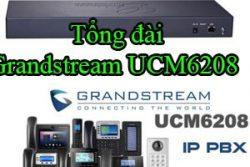 Tong Dai Grandstream Ucm6208
