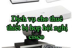 Dich Vu Cho Thue Thiet Bi Hop Hoi Nghi Cisco