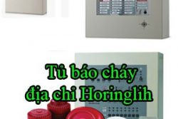 Tu Bao Chay Dia Chi Horinglih