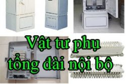 Vat Tu Phu Tong Dai Noi Bo